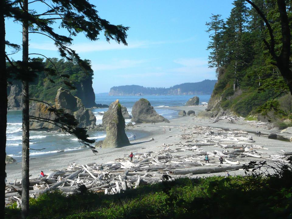 Ruby Beach Olympic Nationalpark