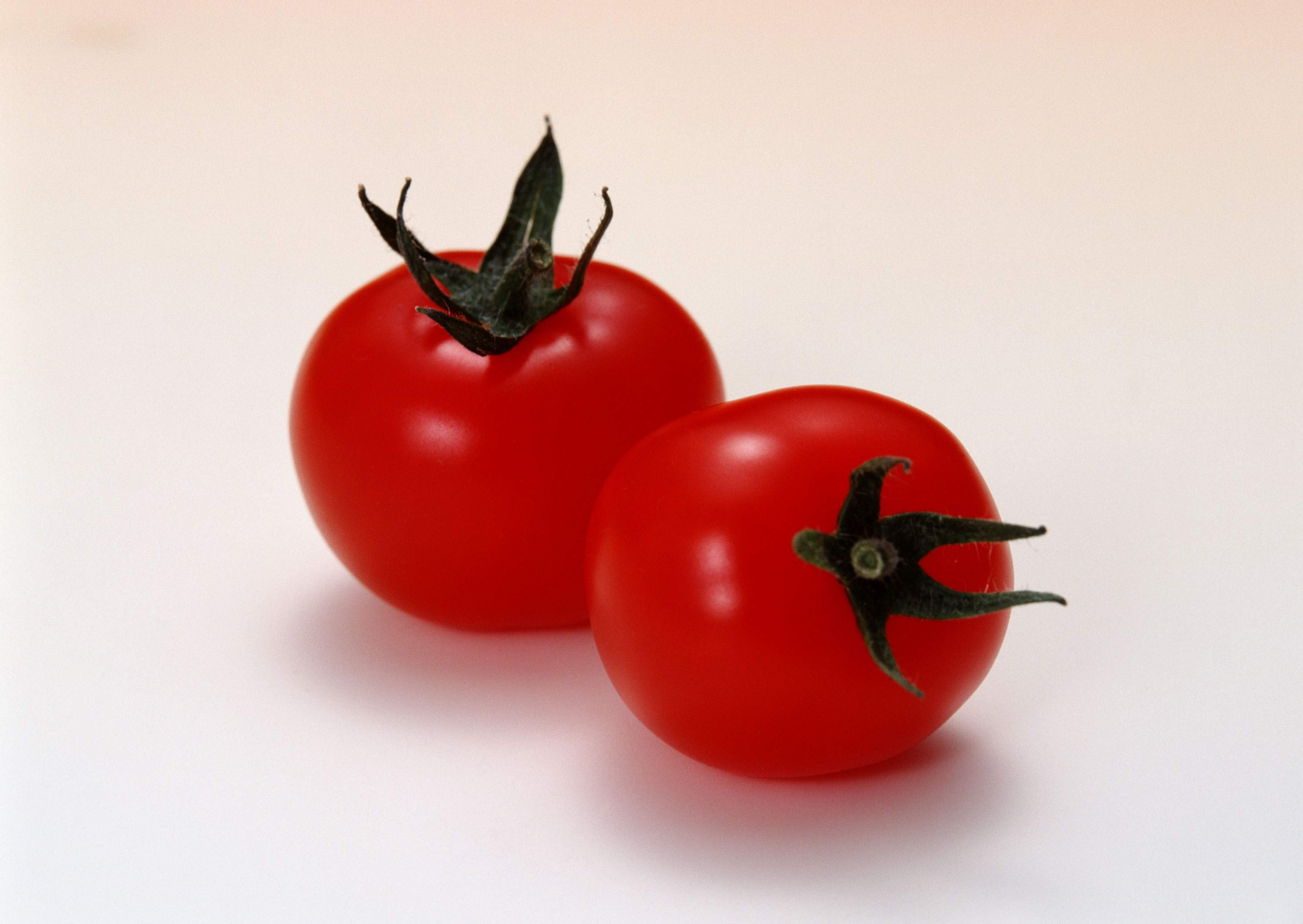 Free download high resolution image - free image free photo free stock image public domain picture -two red ripe tomatoes
