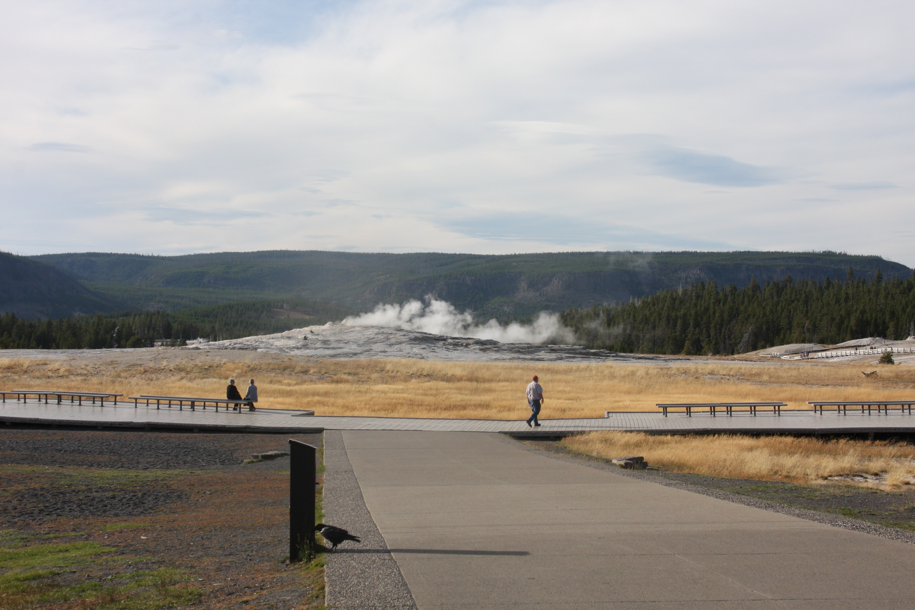 Free download high resolution image - free image free photo free stock image public domain picture -Beautiful geyser in yellowstone national park
