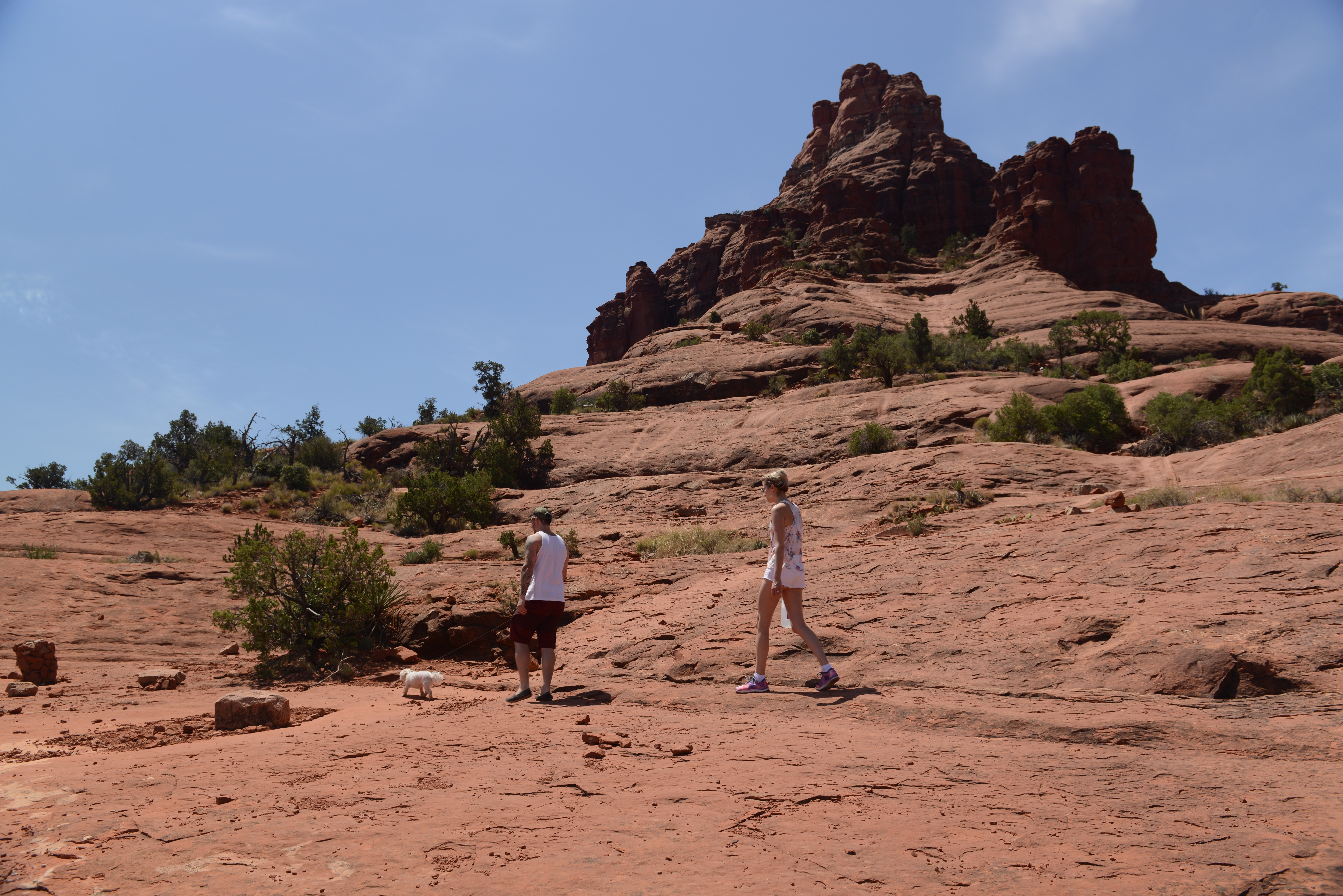 Free download high resolution image - free image free photo free stock image public domain picture -Hiker deciding to hike Cathedral Rock located in Sedona Arizona