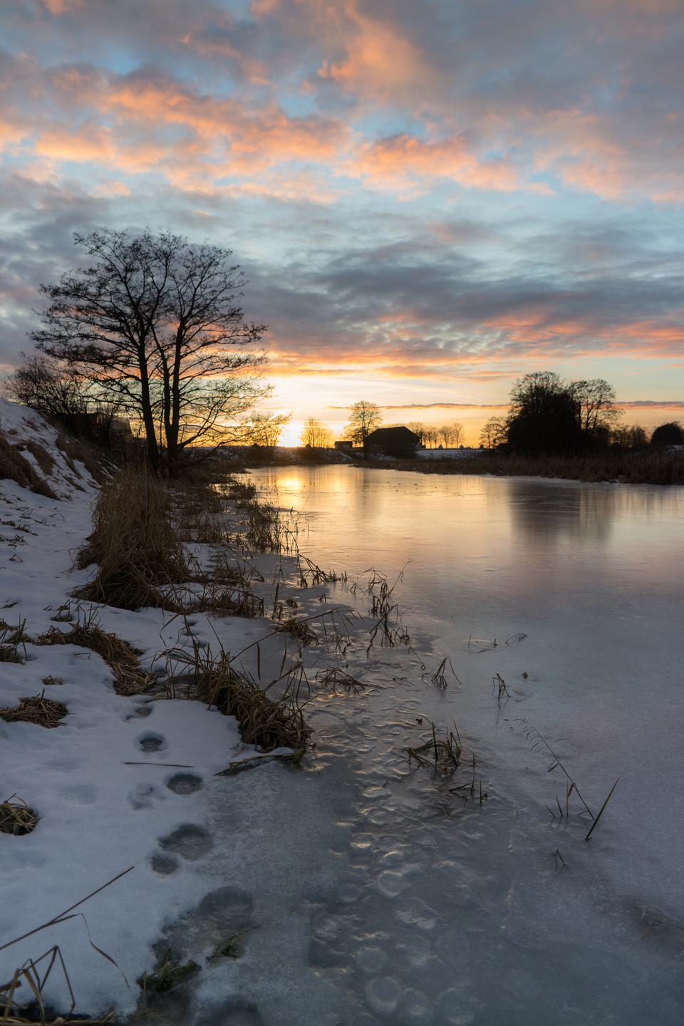 Free download high resolution image - free image free photo free stock image public domain picture  Winter forest on the river at sunset