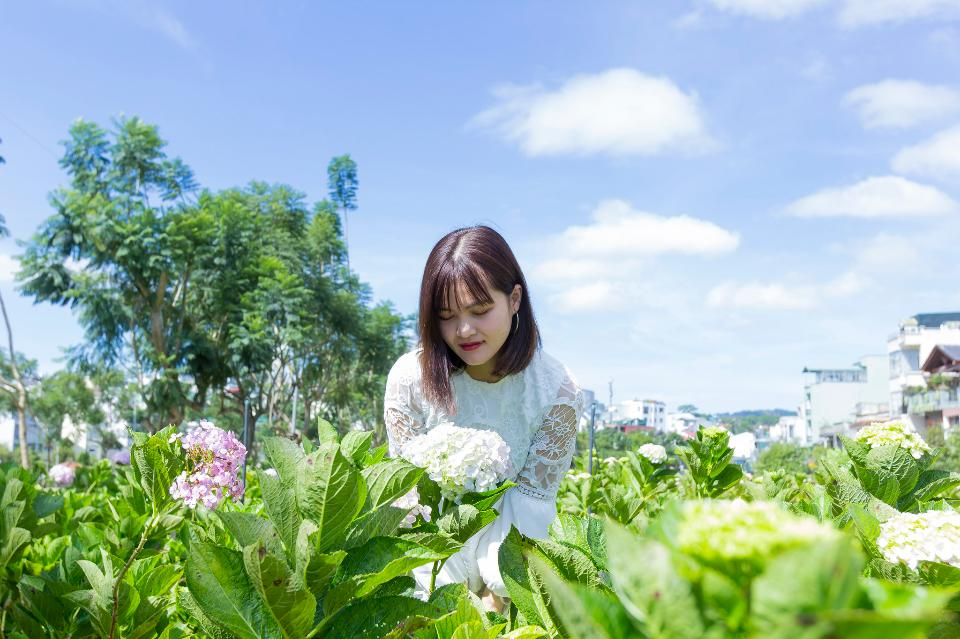 Free download high resolution image - free image free photo free stock image public domain picture  Beautiful Asian Girl smell of the flower