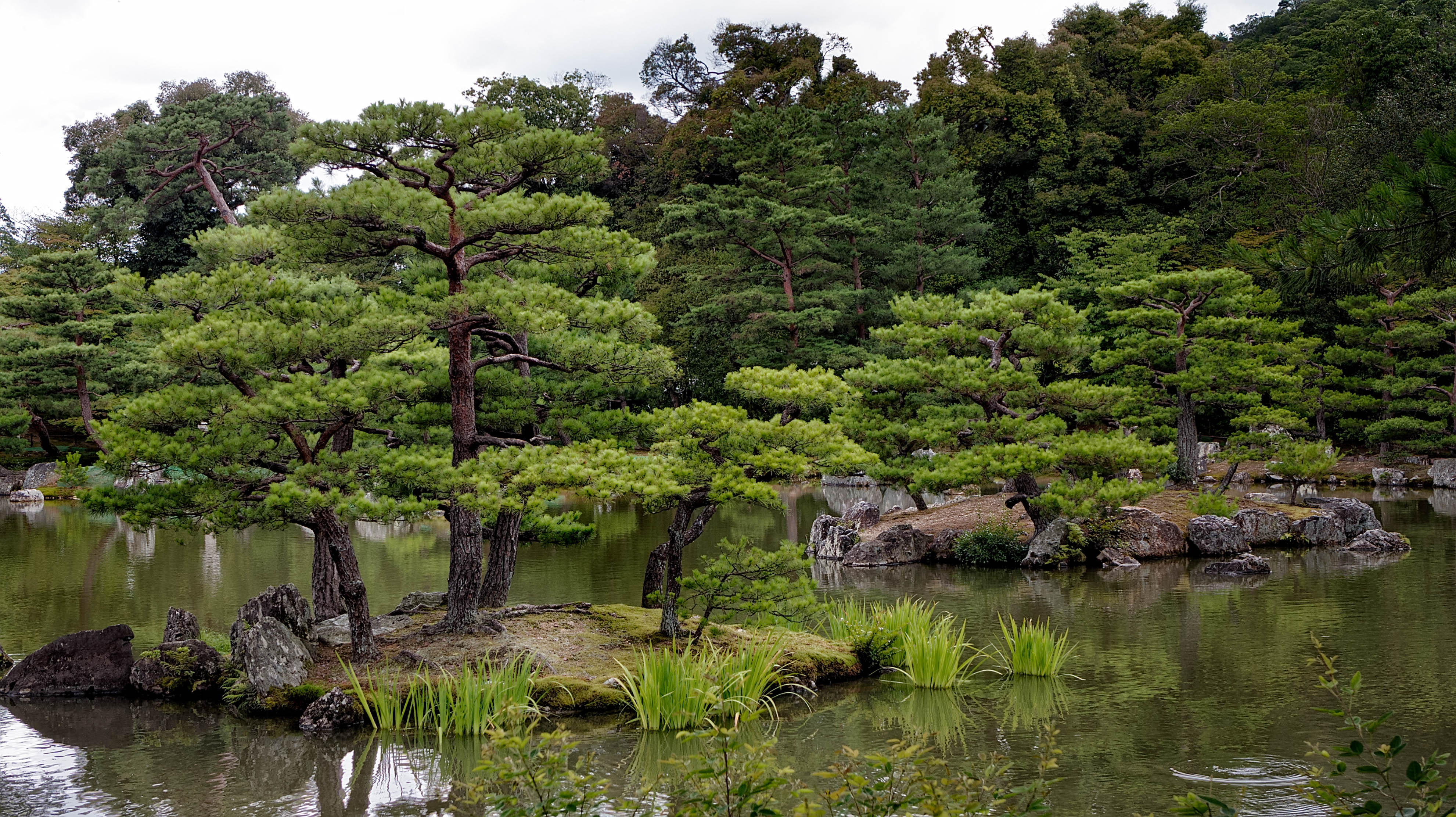 Free download high resolution image - free image free photo free stock image public domain picture -日本庭園、京都