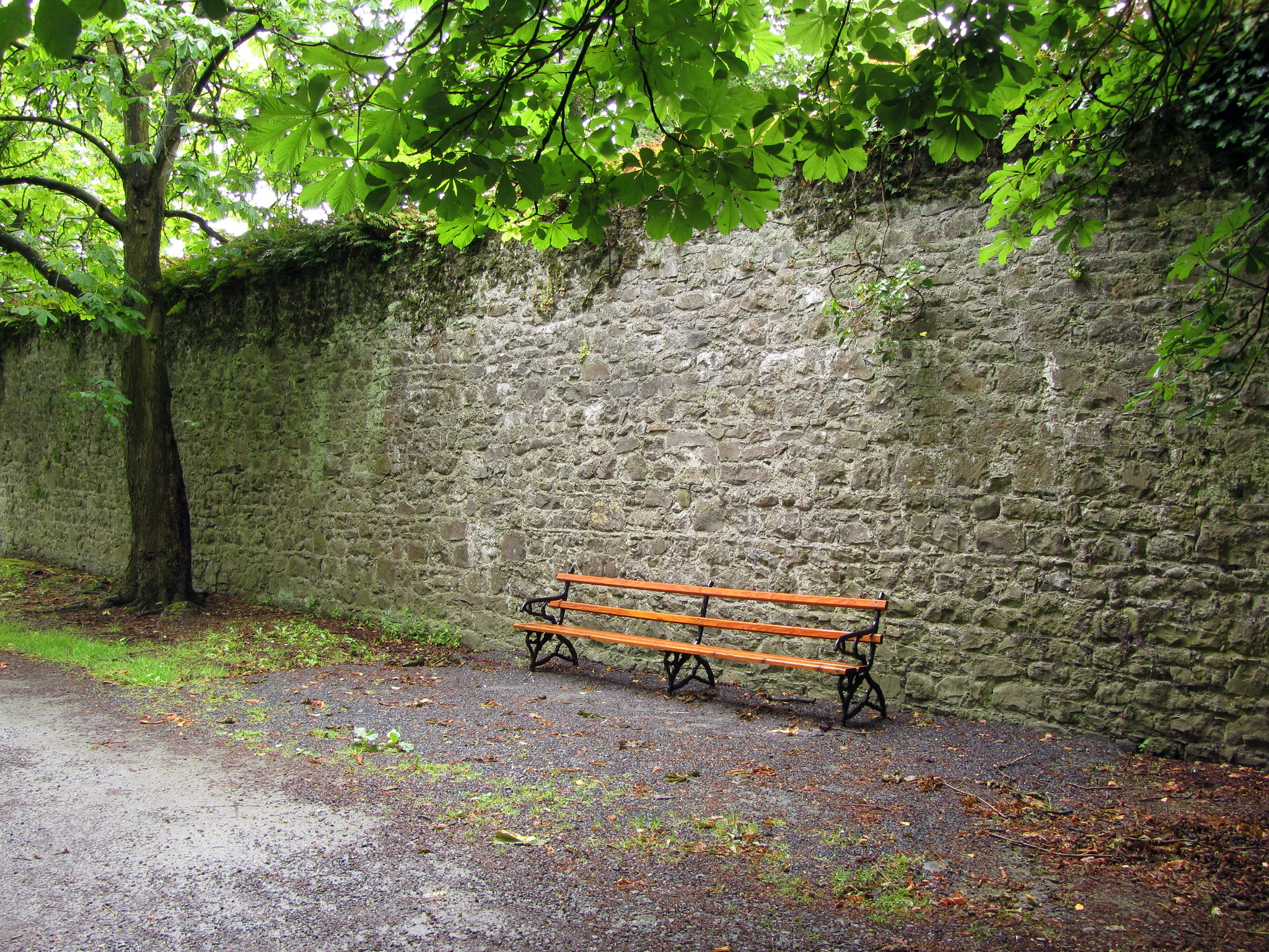Free download high resolution image - free image free photo free stock image public domain picture -Bench against a brick wall; urban scenery