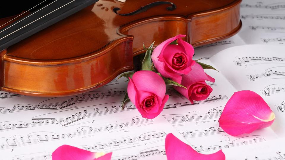 Free download high resolution image - free image free photo free stock image public domain picture  Red roses and a violin on the table