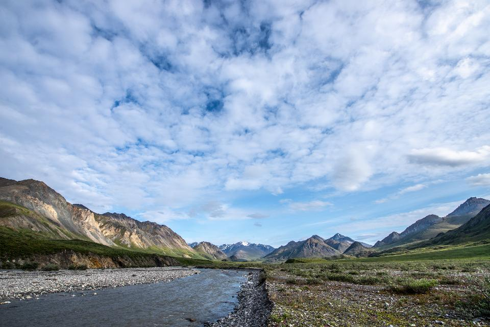 Free download high resolution image - free image free photo free stock image public domain picture  Arctic National Wildlife Refuge