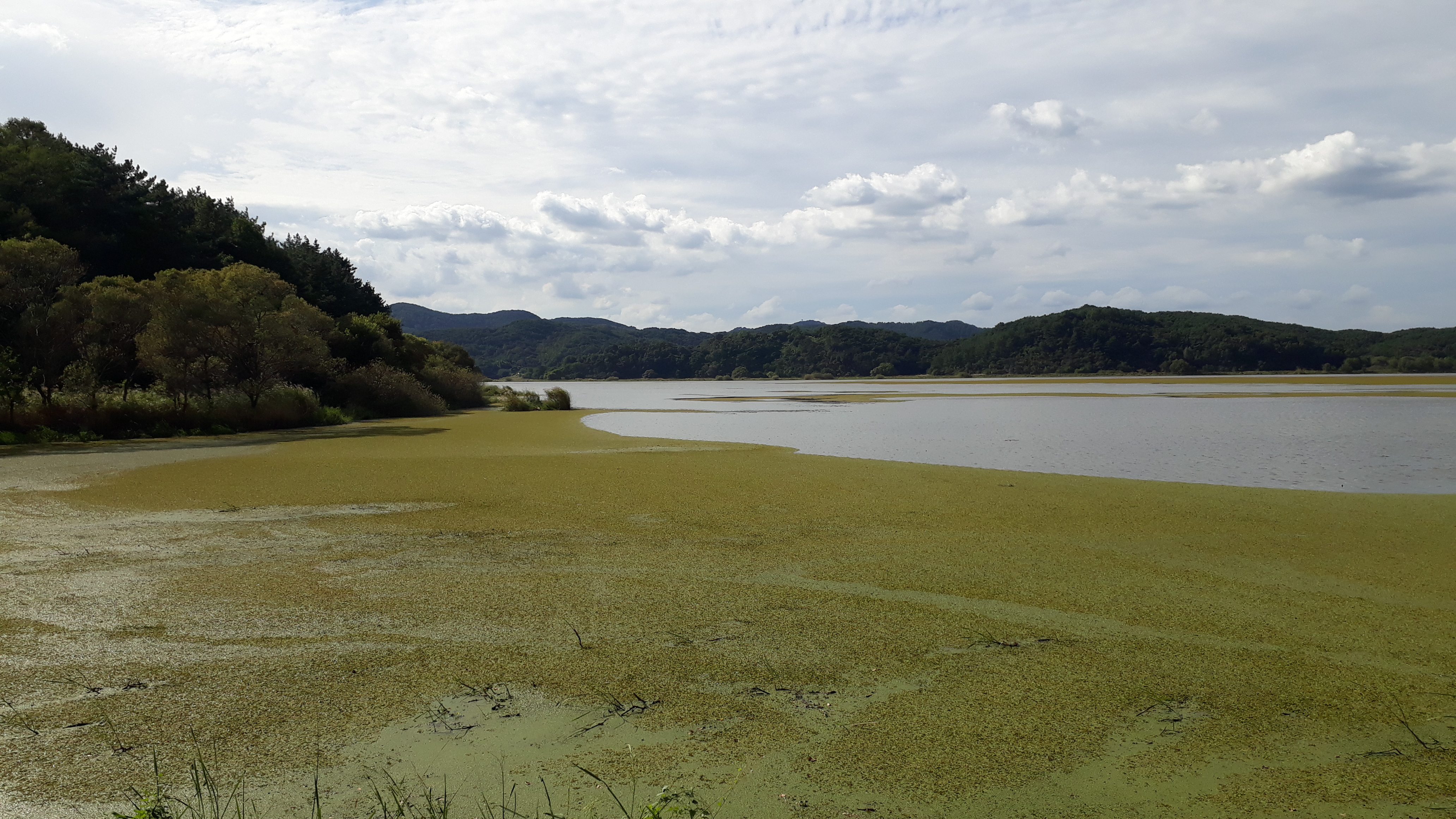Free download high resolution image - free image free photo free stock image public domain picture -Upo Wetland in Changnyeong Korea